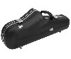 Jakob Winter 2195 tenor sax case AR