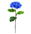 Europalms hydragena spray, blue, 76cm   82530562